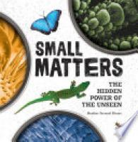 Cover image for Small Matters